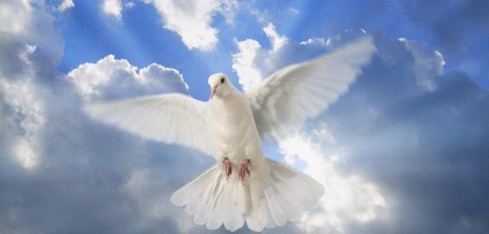 Ora con las letanías al Espíritu Santo